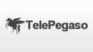 TelePegaso